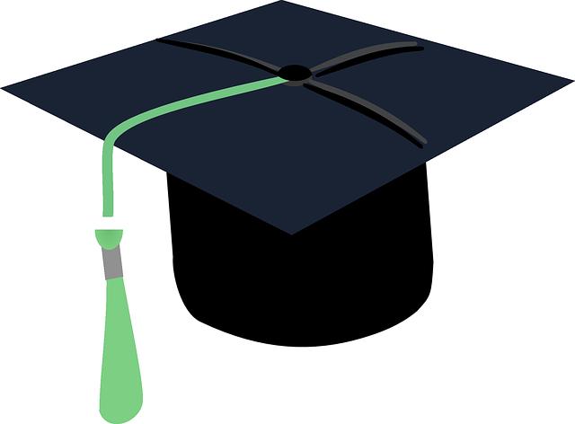 Výběr bakalářské či diplomové práce